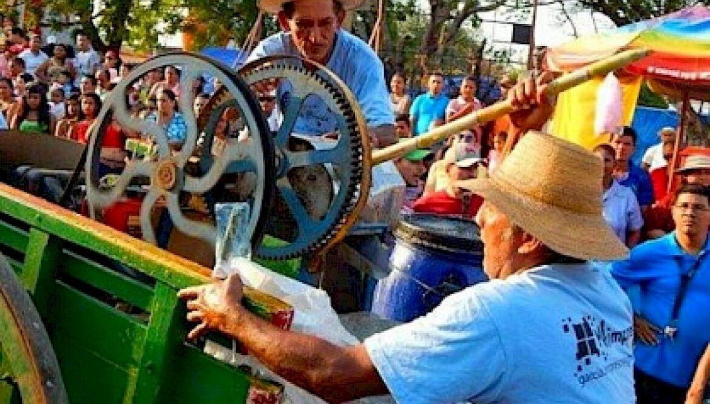 Festival de la caña de azúcar – Pesé